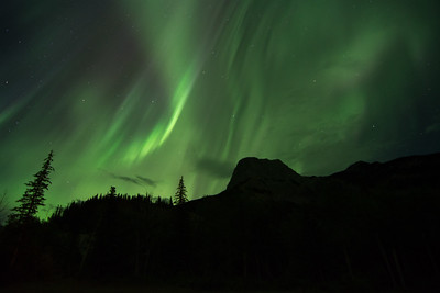 Aurora Borealis in Alberta
