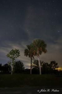 Stars over palms 2