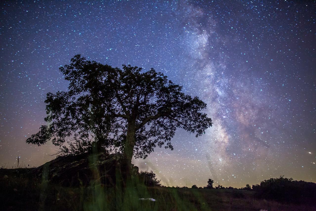 Floyd Milky Way