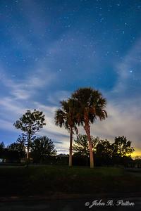 Stars over palms 1