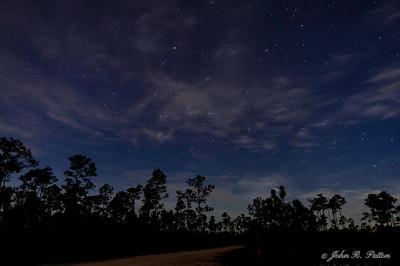 Night. Moon light. Everglades National Park. Florida. USA.