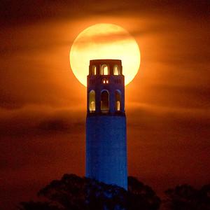 Coit Tower Moon