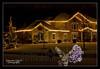 12-29-2011-Christmas_Lights_370-6568-2-DDP