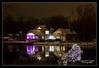12-29-2011-Christmas_Lights-6552-DDP