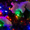 Lights on snow covered tree