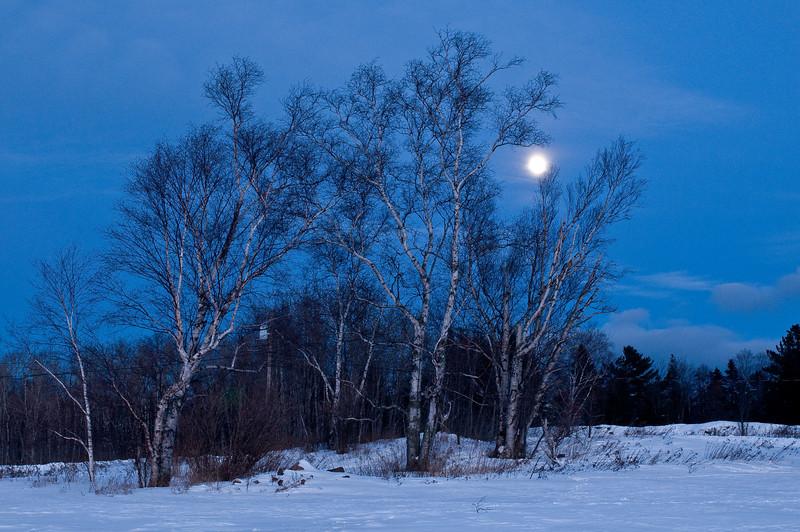 MNWN-9052: Winter full moon