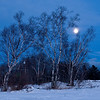 MNWN-9052: Winter full moon