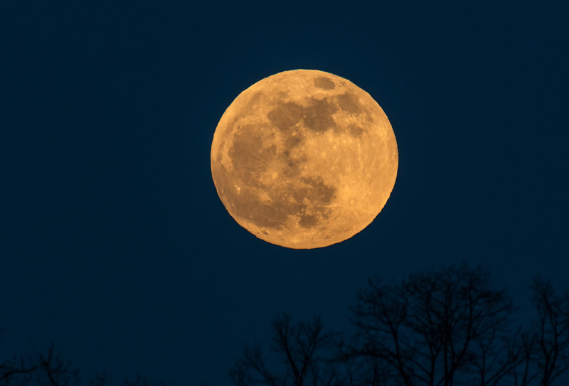 January Blood Wolf Full Moon