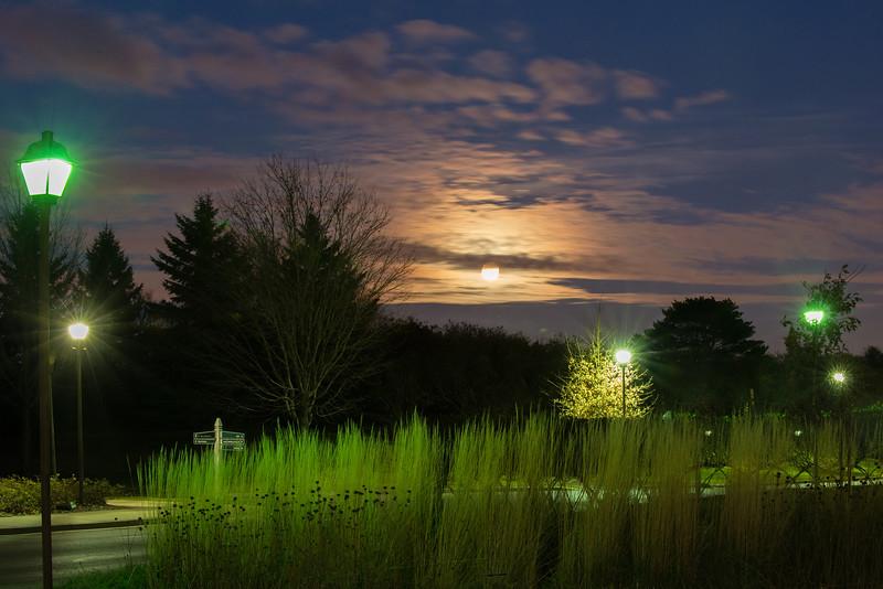 Full moon at the Minnesota Landscape Arboretum