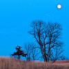 MNWN-12130: Crow-Hassan Park under the full moon