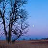 MNWN-12124: Evening twilight
