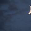 MNGN-13-37: Quarter Moon