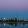 Full Moon and reflection in wetland