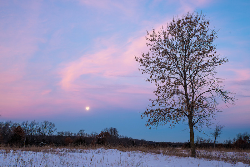 Setting full moon on the prairie