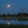 Full moon at Sherburne NWR