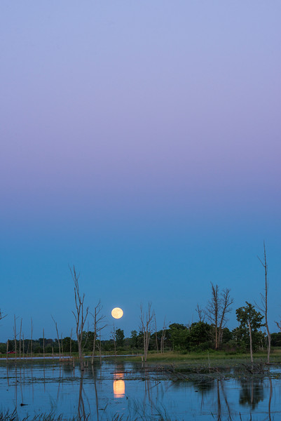 Full moon rising at twilight