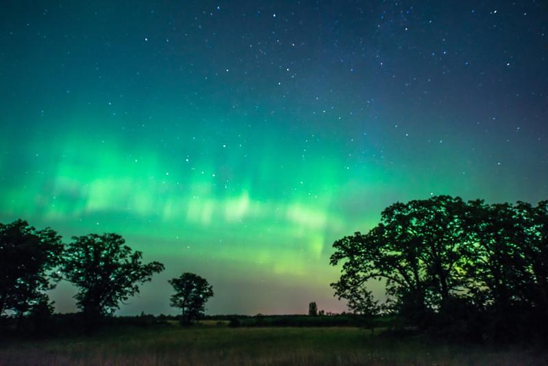 Auroras over Oak-Savanna prairie