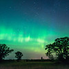 Auroras over Oak-Savanna prairie