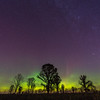 Northern Lights over a Oak-Savanna Prairie