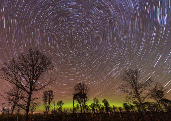 Aurora and star trails in the forest