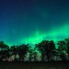 Northern Lights over Oak-Savanna Prairie