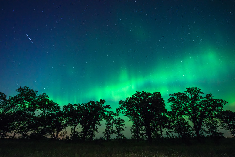 Northern Lights over Oak-Savanna Prairie