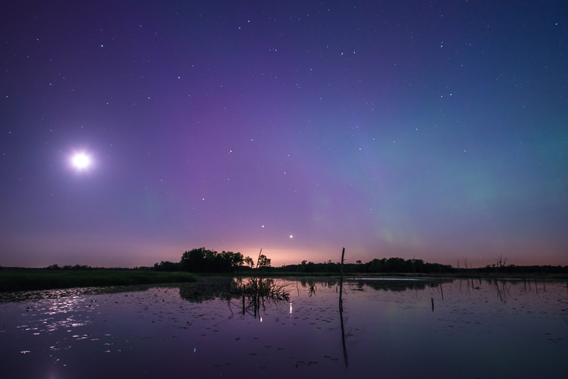 Auroras over wetland area