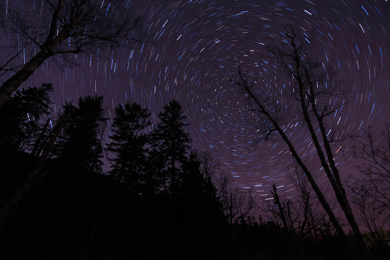 Star Trails in Northern MN forest