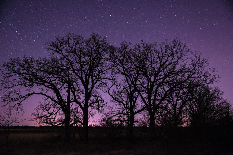 Stars and Oak-Savanna Prairie