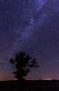 Milkyway at Crex Meadows WMA