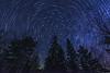 Star Trails in Northern Minnesota