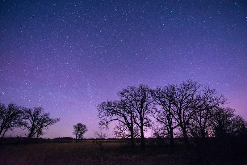 Night at a Oak-Savanna Prairie