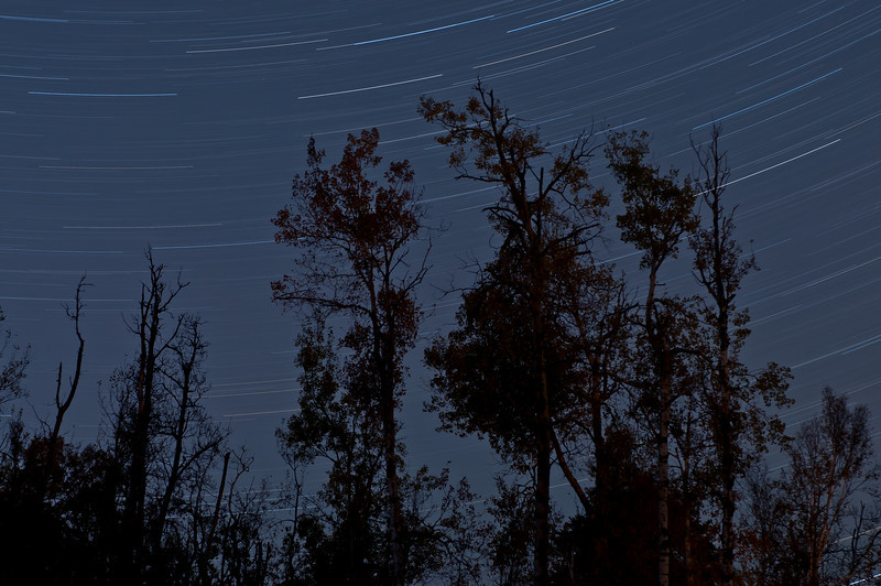 MNGN-10049: Star Trails in the Northwoods