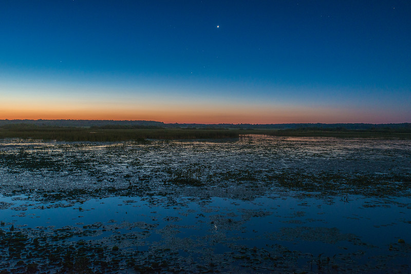 Venus and reflection over wetland