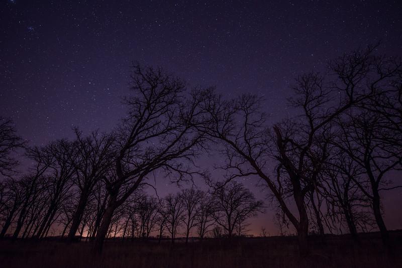 Stars in Central Minnesota
