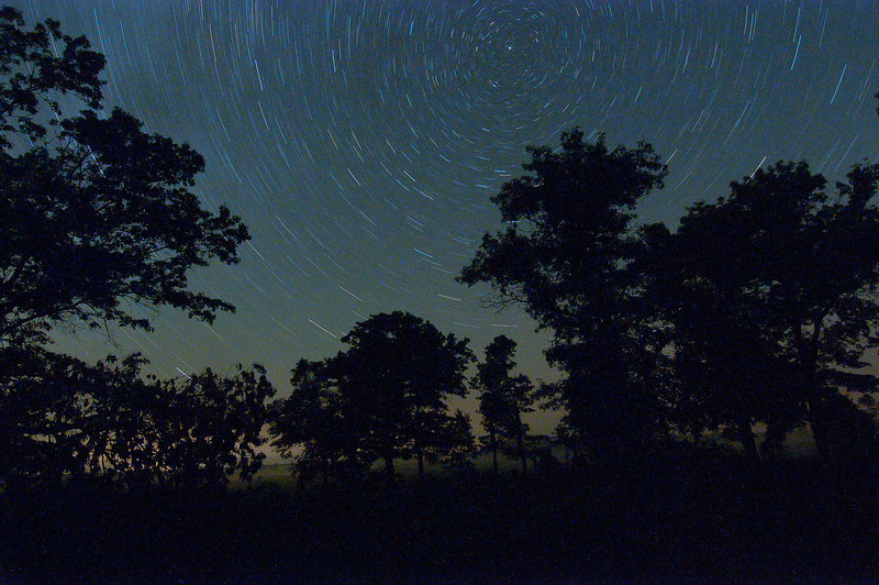 MNGN-11133: Crex Meadows WMA star trails:  (<i>25 min exposure at around 3:30 AM)</i>