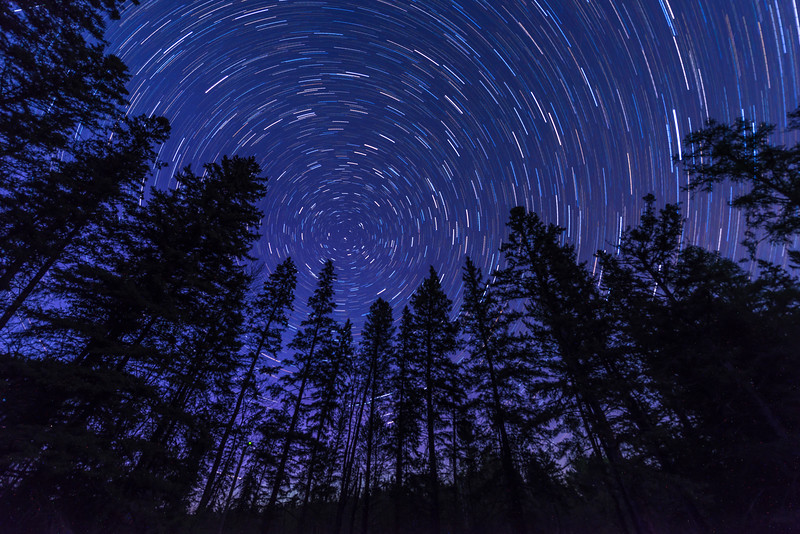Star Trails at Itasca State Park