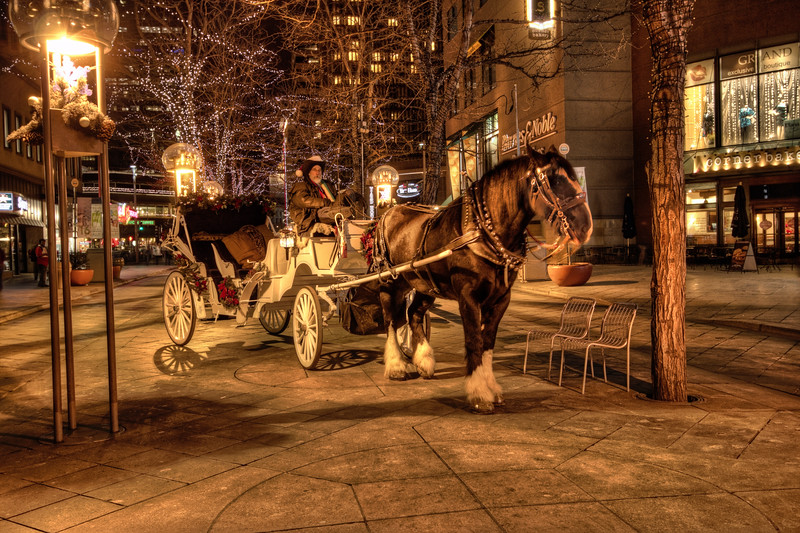 Horse & Buggy 1