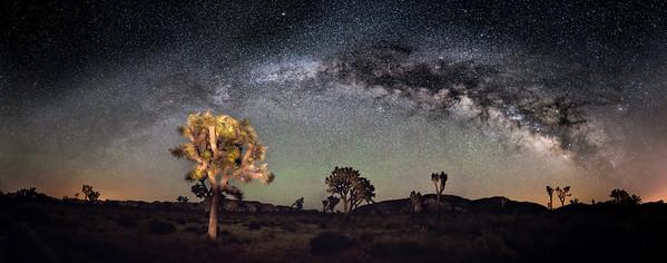 JT Milky Way
