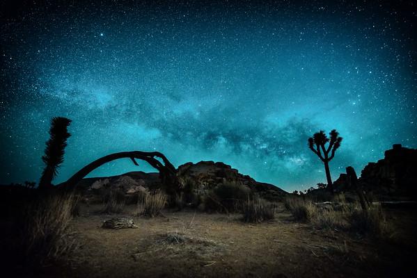 Milky dreams