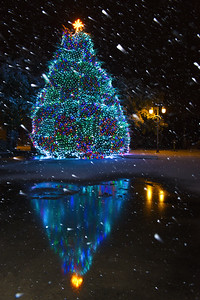 Christmas Tree-Night-Snow