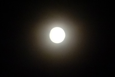 Full moon 6-25-2010