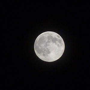 Harvest Moon 9-22-2010