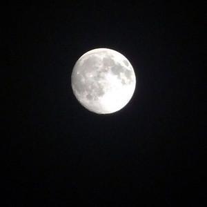 Almost full Moon November 2010