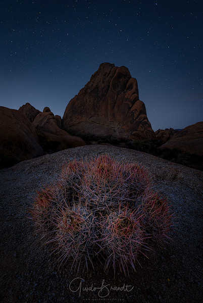 Star struck in Alabama Hills