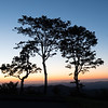 Blue Ridge Twilight Silhouettes