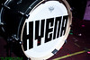 Hyena10-15-5371