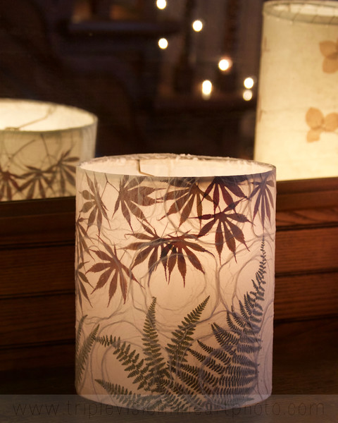 Nightlights, Luminaries & Lampshades