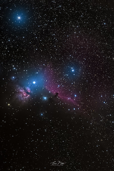 The Horsehead and The Flame Nebula.