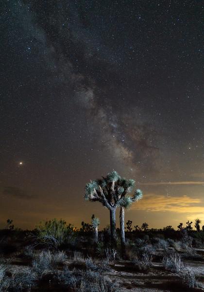 Mars and the Milky Way over Joshua Tree National Park